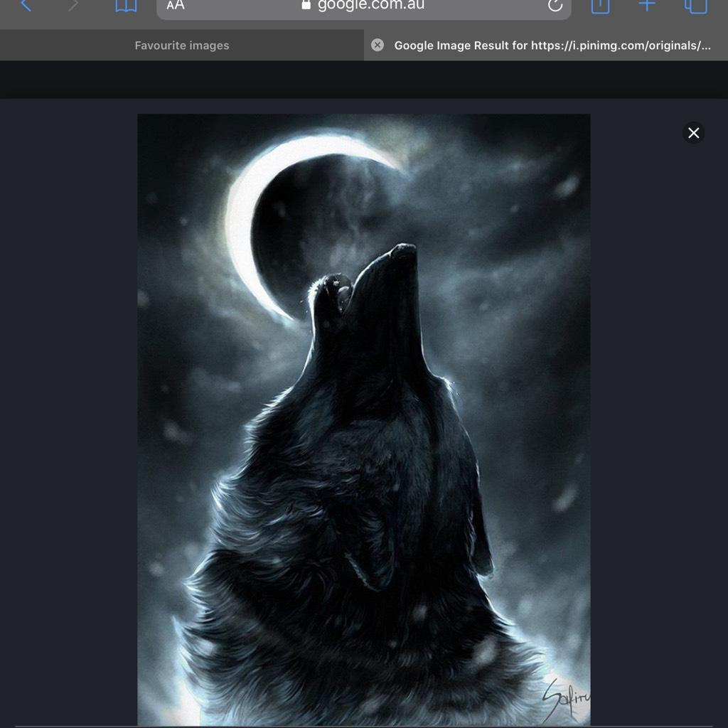 wolfshowl01